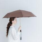 Folding Umbrella bran